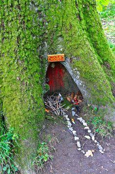 """""""Mole's House"""" play garden idea."""
