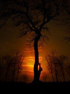 sunrise fog with ufo lights