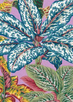 Fabric by Kaffe Fasset