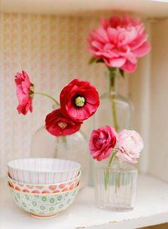 #color #flora #flower
