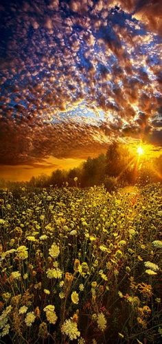 'Live Every Moment' Milwaukee, Wisconsin Horizons, USA by Phil Koch