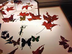 Fall Light Table