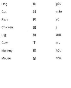 Chinese Words for Animals - Learn Chinese