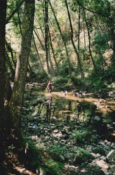 """*** Three Rivers Deep (book series) """"A two-souled girl begins a journey of self-discovery..."""" #Nature #threeriversdeep #Elemental #Devvi --"""