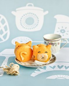 carrot kitty cat macarons