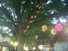 Lights @ apple blossom on the Walking Mall, Winchester,VA
