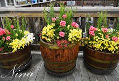 Pier 39 flower planters