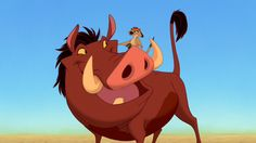 "What is your Disney personality type? | Oh My Disney // I got Pumbaa! (ISFP) Very in tune with your senses, you are friendly, kind, and enjoy having your space. That said, you are extremely loyal and committed to your friends. You may seem thick-skinned, but you can take things rather personally. It helps to have a motto like, ""hakuna matata."""