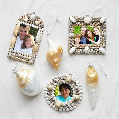 Wisteria - Holiday - Holiday Decor - Trim a Tree -  Shell Frame Ornaments - Set of 3 - $59.00