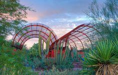 Arizona Desert Botanical Gardens