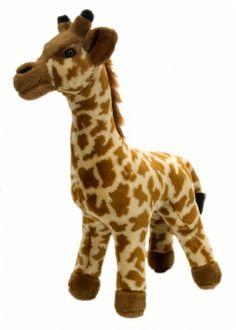Standing Giraffe at theBIGzoo