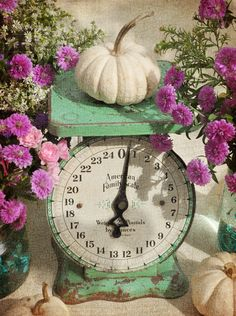 pink flowers, kitchen scale, vintage scales, antiqu scale, vintag scale
