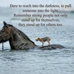 Dare to reach into the darkness...