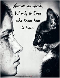Animal love: Animals do speak, but only to those who know how to listen. ❤ beauti anim, anim quot