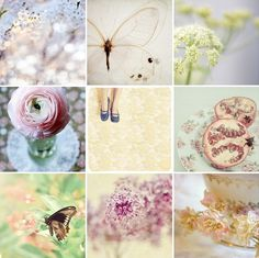 Spring inspired photography