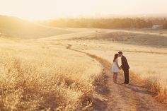 field, kiss, portrait photography, engagement photos, texa, sunset, engagement photography, engag photographi, photo idea