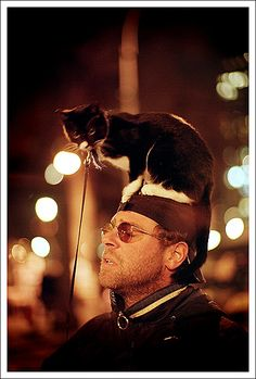 Cat on head by pyl213, via Flickr