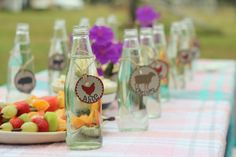 eco-friendly farm party (birthday party drink bottle printables from you-make-do-shop.com)