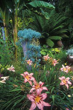 Little  Lewis Garden, Bainbridge Island