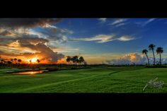 This is why I golf