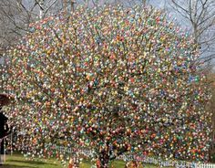 Wow! Look at all of the Easter eggs on that tree!  Looks like fun, doesn't it?  That photo just brings a big smile to my face:)