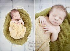 Oscar & Rose Photography - newborn