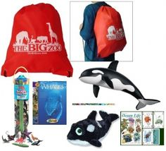 Orca Mega Pack (6 Items) at theBIGzoo.com, a family-owned toy store.