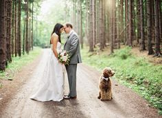 a sweet Woodland Elopement with their pup!