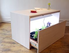 Grow, Prep, and Serve at This Hydroponic Kitchen Island