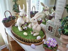 Just Adorable! Set of Two Bunnies will delight.  H195095 http://qvc.co/-Shop-ValerieParrHill