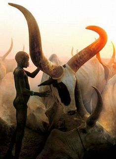 Dinka Boy with Long Horned Bull by Angela Fisher & Carol Beckwith