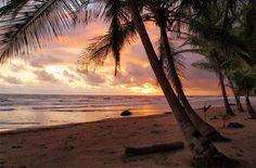 Playa Grande, Las Baulas National Marine Park, Costa Rica. Photo by Wikimedia Commons