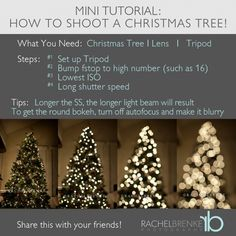 Use this technique not only to shoot pictures of Christmas trees, but also of Christmas lights and cityscapes for an interesting effect. -JPH