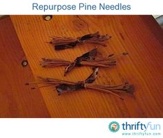 This guide contains crafts using pine needles. Pine needles can be a thrifty supply in a variety of projects.