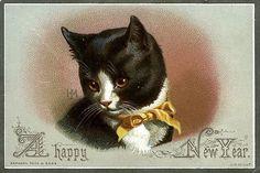 antique Happy New Year postcard black & white cat