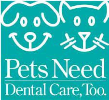 Dogs and cats need dental care too!