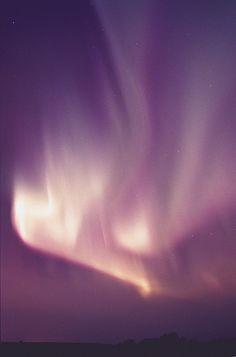 Northern Lights, Alberta