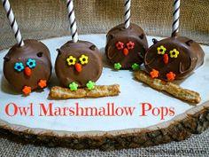 Owl Marshmallow Pops food, owl marshmallow, marshmallow pops, cake pop, owl barn, marshmallows, owl pop, dessert sweet, barn owls