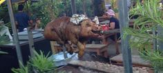 Pig on a spit at The #ButcherShop Beer Garden & Grill - #Wynwood #Miami, FL | #MarksList