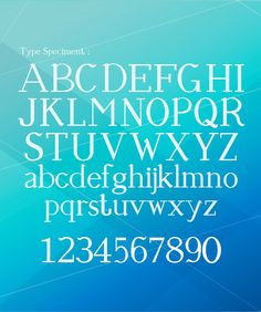 """VERSALE - Customize Typography"" by   William Ng"