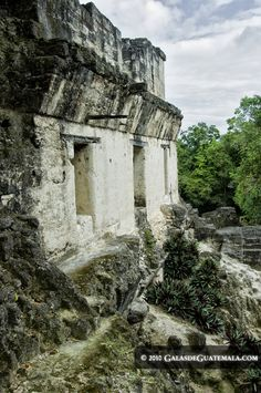 Structure in the Central Acropolis, Tikal National Park