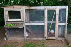 No matter what your chicken coop might look like or what your end purpose in chicken-keeping might be, a number of accessories are available that can enhance your chicken-keeping experience, making it as easy and fun as possible, while keeping your beloved brood safe and healthy.