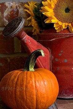 Autumn vignette, pumpkin & old red watering can w/ a sunflower. #rustic #country #farmhouse #chic #pretty #fall #autumn #harvest #decor