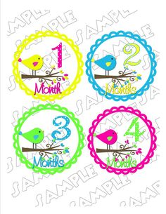Monthly Onesie Stickers Birds on branches
