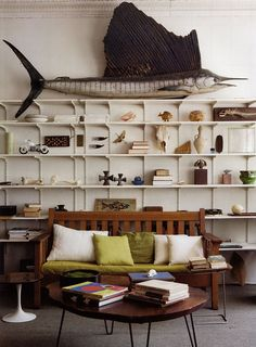 A wall of collections! Great way to decorate.