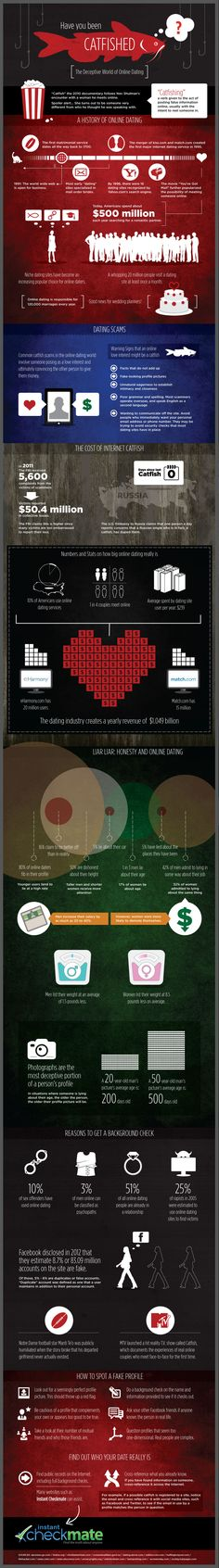 Have You Been Catfished? #infographic #online dating