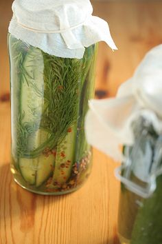 Fermented Kosher Dill Pickles