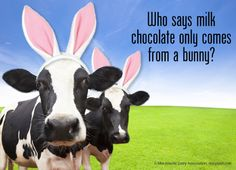 Who says MILK chocolate only comes form a bunny?