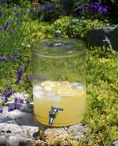 lemonade fresh with lavander