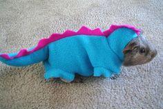Guinea pig in a dinosaur costume